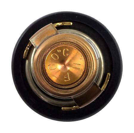 Thermostat TAMA 60C, price, TAMAWM32YA,  art-00044326( 2) | F25