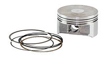 Piston Suzuki DF200-250 (0.5) with rings