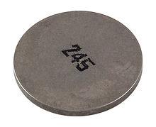 Shim, Suzuki (245)